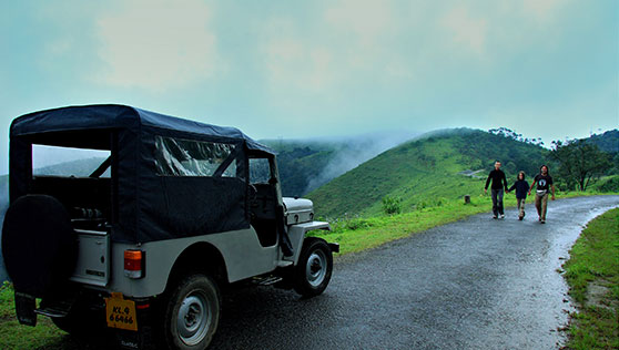 Jeep Safari in the mountains around Periyar National Park and Eravikulam