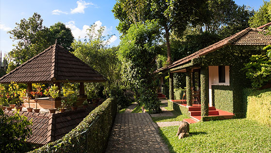 Pathways alongside the cottages in a nature retreat Thekkady
