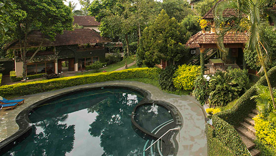 Pool surrounded by lush green trees in Cardamom County Thekkady