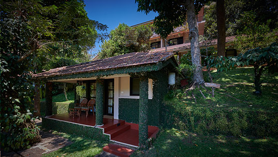 Private cottages set on a slope with trees and greenery Thekkady India