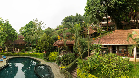 Villas are set on a slope on the hill overlooking the pool at Cardamom County Thekkady