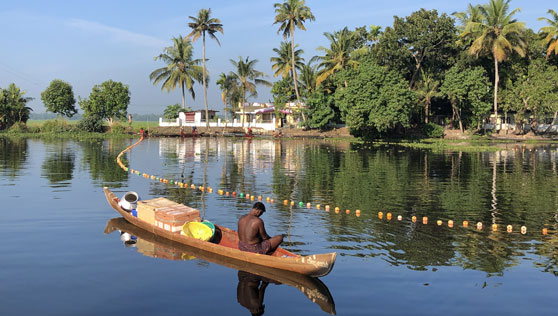 Backwaters in alleppey kerala