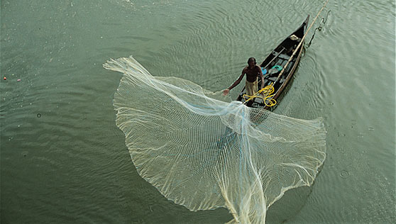 Fishing with local canoe and nets at Vembanad lake Alleppey